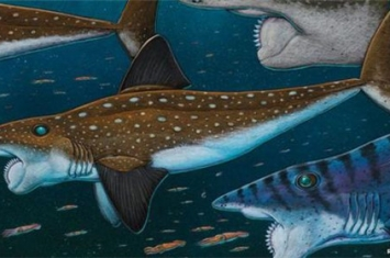 史前最恐怖的五种鱼类 巨齿鲨一口就能吞掉霸王龙