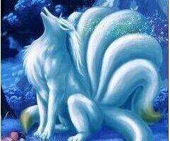 青丘狐和九尾狐的区别,吃100个人肝脏修炼千年成为九尾狐(尾巴)