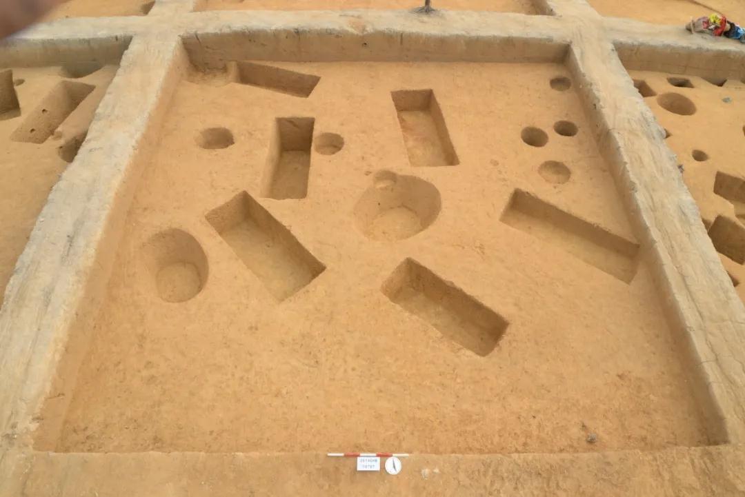 广州中新知识城北起步区马头庄发现先秦时期遗址  第11张