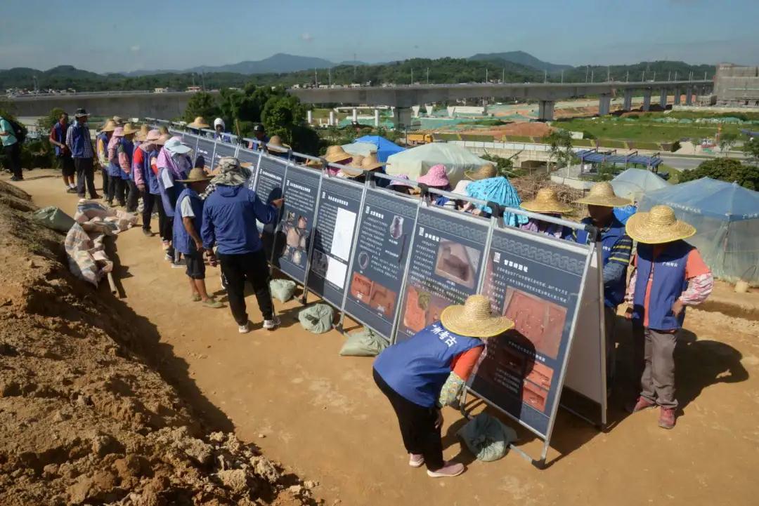广州中新知识城北起步区马头庄发现先秦时期遗址  第16张