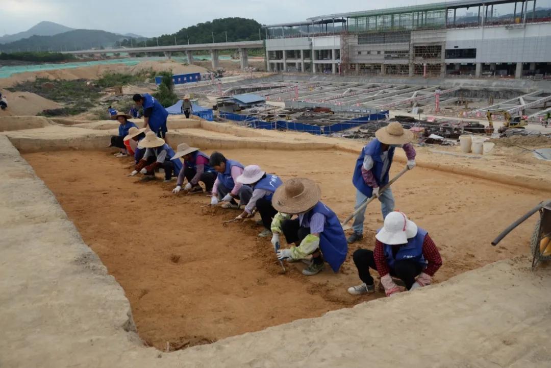 广州中新知识城北起步区马头庄发现先秦时期遗址  第7张