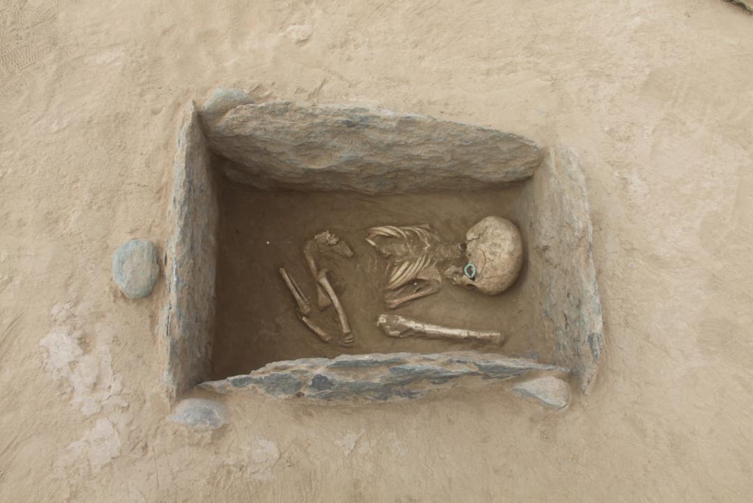 新疆阜康白杨河流域发现大型墓群  第7张