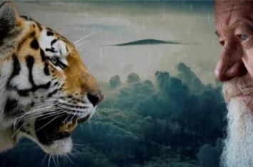 人类是地球上无敌霸主吗,动物联手攻击人类会怎样?