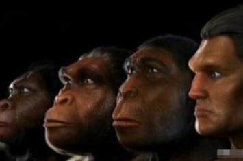 几亿年后,猿类动物有可能进化成人类吗?
