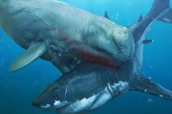 十大远古最恐怖的动物排行榜 体型巨大几乎没有天敌