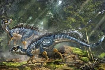 最弱的恐龙是什么龙?世界上最不厉害的恐龙十大排名