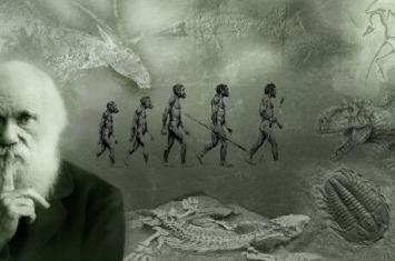 人类是怎么进化而来的?人类直系祖先或许来自海洋