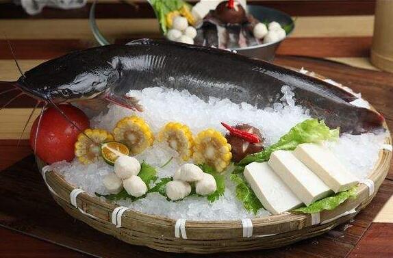世界上最脏的鱼:巴沙鱼也叫鲶鱼 土腥味儿很重