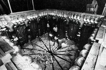 老鼠乌托邦实验是怎么回事?揭秘1780天的黑暗实验