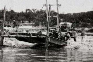 1983年蛇灾事件真相:洪水让蛇无家可归 人类以为有天灾