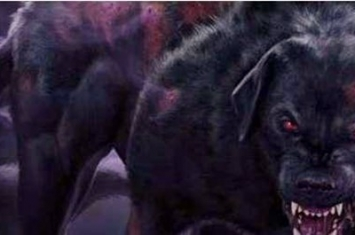 黑犬是什么意思
