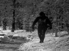 蒙古野人阿尔马斯,人猿之间的聪明野人(消失不见)