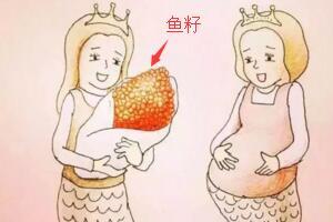 美人鱼是怎么生孩子的,真实美人鱼生孩子图片