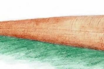 """""""云南肉茎螺""""研究表明古生代海洋中软舌螺动物与腕足动物具有亲缘关系"""