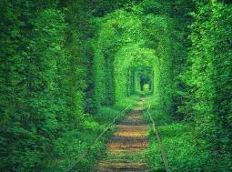 世界上最浪漫的隧道,乌克兰爱的隧道是受爱神青睐的情侣之地