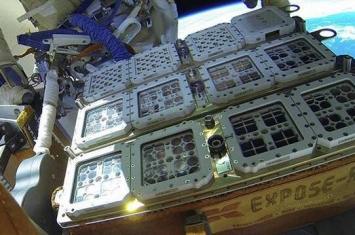"""""""生物和火星试验"""":国际空间站试验结果表明生命在火星上甚至宇宙中都是可能的"""