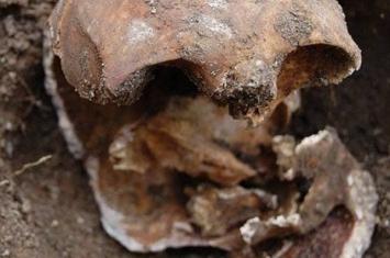 英国居民后院挖出132年前头骨破百年悬案