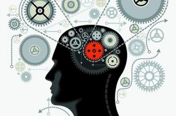 如何保养好大脑