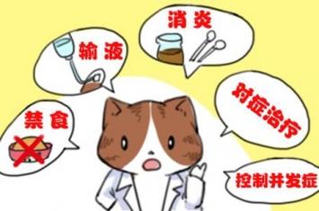 胰腺炎能治吗