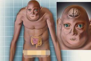 一亿年后的人类图片曝光,秃毛小嘴皮肤下垂像怪物