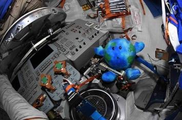 """马斯克的毛绒玩具随""""龙-2""""无人驾驶飞船来到国际空间站上"""
