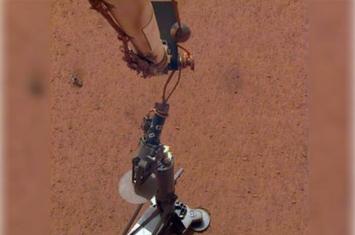 洞察号探测器钻探火星疑撞石 暂缓行动两周