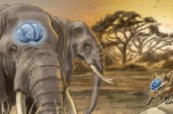 新研究指哺乳动物在灾难性事件之后进化出大脑袋