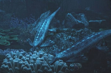 """早三叠世南漳-远安动物群中首次发现远古""""鸭嘴兽""""——卡洛董氏扇桨龙"""