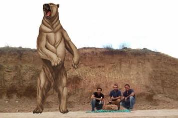 """阿根廷采石场发现70万年前""""南美细齿巨熊""""遗骸化石 体重800公斤"""