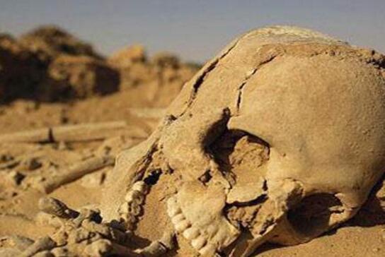 揭秘罗布泊为什么恐怖,生化丧尸/巨型食人蜥蜴(尸骨遍地)
