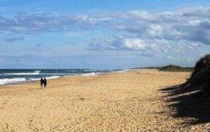 世界上最长的海滩,普腊亚卡西努全长为255千米