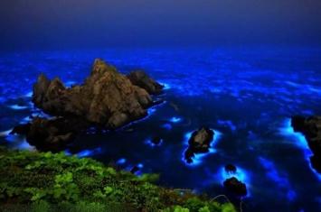 """夜光虫?台湾马祖列岛海边出现""""蓝眼泪""""奇景 与天上银河相辉映"""