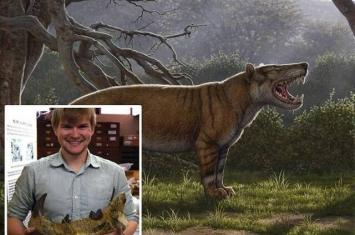 """肯尼亚发现鬣齿兽科新品种""""Simbakubwa kutokaafrika"""" 最大的食肉哺乳动物"""
