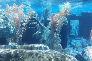 古人是还活在百幕大海底吗