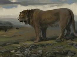 世界上最大的狮子,残暴狮体长为4.5米重800斤(庞然大物)