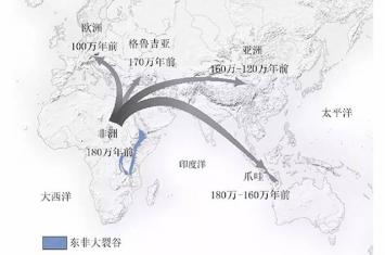科学杂志:中国发现的主要直立人头骨化石