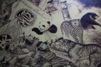 为什么熊猫存在800万年而不灭绝