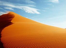世界上最恐怖沙漠排名,索苏斯弗雷沙漠遍布细菌(一触即残)