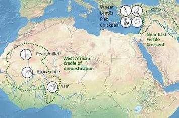 国际科学家小组指出人类文明的确切发源地:非洲东北部