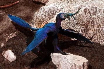 热河生物群驰龙科新标本赵氏小盗龙胃中发现蜥蜴新属种——王氏因陀罗蜥