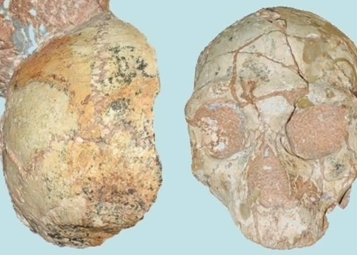 希腊南部洞穴发现21万年前智人颅骨化石 人类迁移欧亚大陆历史大幅推前16万年