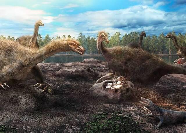 一些恐龙喜欢群居筑巢护蛋