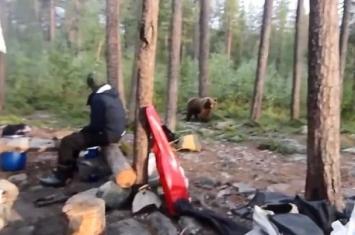 俄罗斯男子郊外露营唱歌成功赶走棕熊