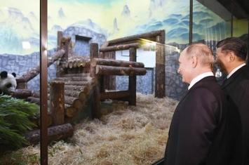 中俄领导人访莫斯科动物园为熊猫馆揭幕
