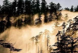 四川瓦屋山迷魂凼进得去出不来,众多探险者失踪在里面