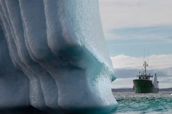 """加拿大""""冰山走廊""""成旅游热点 为渔村带来商机"""