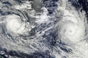 热带气旋有什么特征