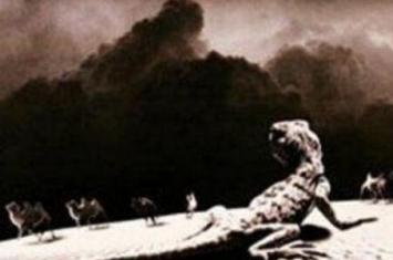 罗布泊里面的诡异生物,罗布泊恐怖生物照片曝光