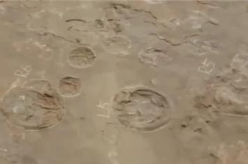 福建发现恐龙舞池