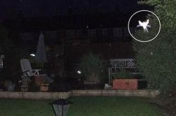 世界上有精灵吗,真的有人拍到了小精灵(视频)